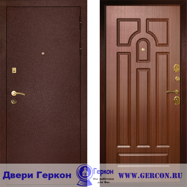 железная дверь московский
