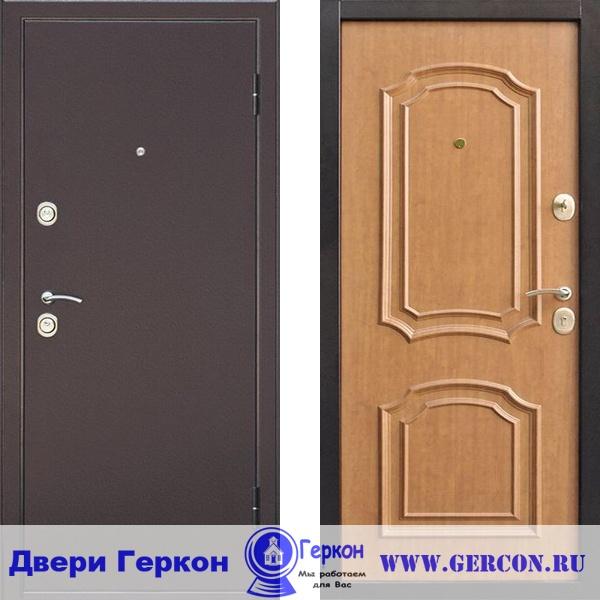 двери металлические г бронницы